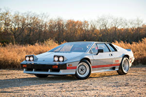 Обои Lotus Ретро Серебряный 1983-86 Turbo Esprit North America Автомобили