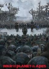 Картинки Обезьяны Солдаты Планета обезьян: Война Кино