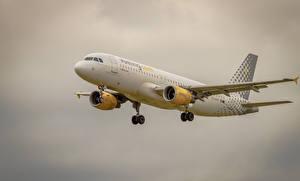 Фотография Самолеты Пассажирские Самолеты Airbus Полет A320-216