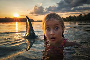 Фотографии Речка Рассветы и закаты Акулы Вода Девочки Испуг Лицо Ребёнок