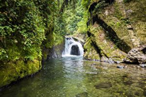 Картинка Реки Водопады Скала Мох Nambillo river Mindo Ecuador