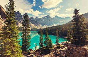 Фотографии Пейзаж Горы Леса Канада Озеро Банф Деревья Moraine