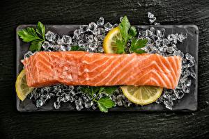 Фотографии Морепродукты Рыба Лимоны Лед Продукты питания