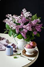 Фото Натюрморт Букеты Сирень Мороженое Черный фон Чашка