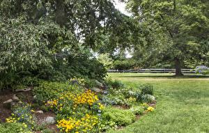 Картинка Штаты Сады Газон Деревья Tower Hill Botanical Garden