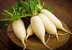 Фото Овощи Редис Вблизи Белый Пища