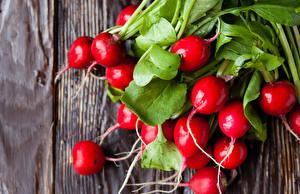 Обои для рабочего стола Овощи Редис Красный Еда
