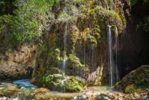 Фотография Водопады Утес Мох