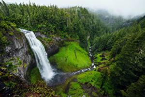 Картинки Водопады Штаты Утес , Andrew Coelho, Salt Creek Falls Природа