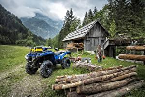 Фотографии Квадроцикл Бревна 2016-17 Yamaha Grizzly 700 EPS