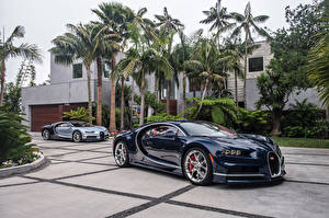 Обои BUGATTI Синий Металлик Пальмы 2016-17 Chiron North America Автомобили картинки