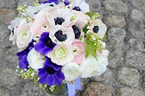 Фотография Букеты Ветреница Лютик Цветы