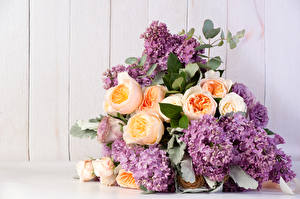 Картинка Букеты Розы Сирень Цветы