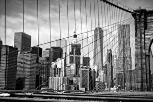 Фотографии Мосты Дома Небоскребы Штаты Черно белое Манхэттен Brooklyn Bridge
