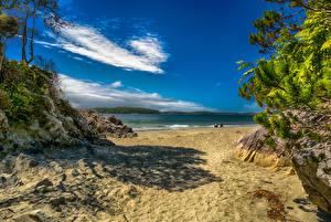 Картинка Канада Парки Берег Небо Песок Tonquin Park