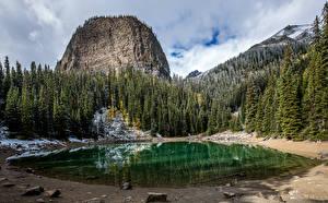 Фотография Канада Парк Лес Озеро Банф Скалы Природа