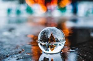 Фото Новый год Шарики Отражение Новогодняя ёлка Лужа