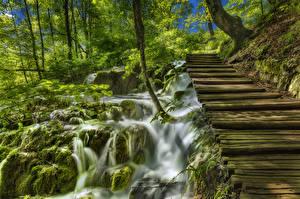 Фотографии Хорватия Водопады Мосты Деревья Мох Plitvice Lakes National Park