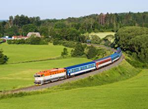 Фотография Чехия Железные дороги Поезда Луга Природа