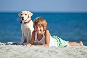 Фото Собаки Пляж Песок Мальчики Улыбка Ретривер Дети