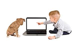 Фотографии Собаки Белый фон Мальчики Ноутбуки Ребёнок