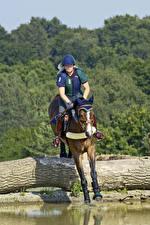 Фото Конный спорт Лошадь Прыгает Спорт Девушки