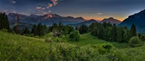 Фото Франция Пейзаж Вечер Горы Леса Альпы Трава Verdant