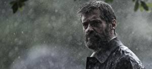 Картинка Логан (фильм) Мужчины Hugh Jackman Дождь Борода Хмурость Фильмы Знаменитости
