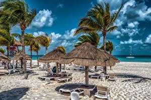 Фотография Мексика Небо Курорты Пляж Пальмы Лежаки Cancun Quintana Roo Природа