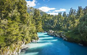 Обои Новая Зеландия Речка Леса Kowhitirangi Природа