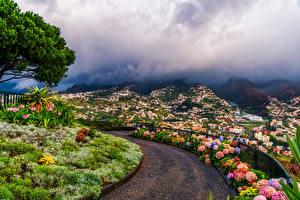 Картинки Португалия Здания Дороги Funchal Madeira Islands