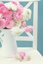 Картинка Лютик Ваза Цветы