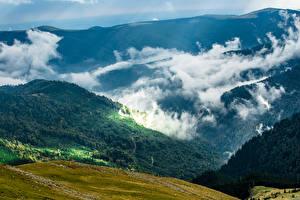 Картинка Румыния Горы Леса