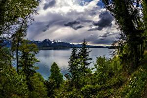 Обои Швейцария Пейзаж Озеро Небо Деревья Облака Thun Canton