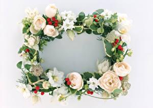 Фотография Шаблон поздравительной открытки Белый фон Венок Цветы