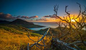Обои для рабочего стола Тропики Рассветы и закаты Берег Пейзаж Гавайи Ветки Облачно Холмы Природа