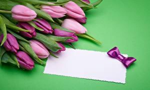 Картинки Тюльпаны Шаблон поздравительной открытки Цветы