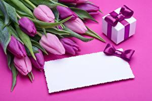 Фотография Тюльпаны Шаблон поздравительной открытки Фиолетовый Подарок Цветы