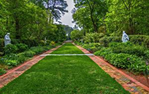 Фото США Парк Скульптура Кусты Газоне Деревья Norfolk Botanical Garden Virginia Природа