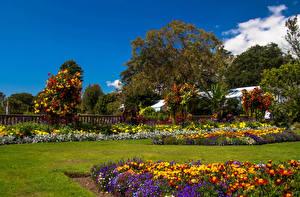 Фотография Великобритания Сады Газон Swansea Botanic Gardens Wales