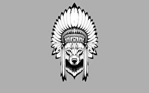 Обои Волки Векторная графика Индейский головной убор Серый фон Животные