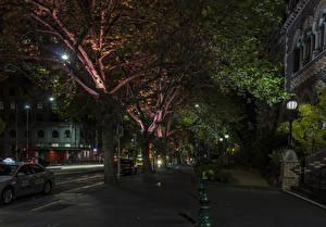 Фото Австралия Мельбурн Здания Улице В ночи Деревья Уличные фонари Города