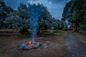 Фото Австралия Парки Костер Деревья Тропинка Дым Halls Haven Resort