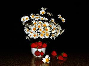 Обои Букеты Ромашки Клубника Черный фон цветок