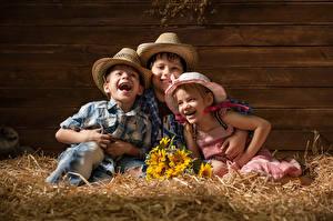 Фотографии Букеты Сено Девочки Мальчики Трое 3 Шляпа Смех Ребёнок