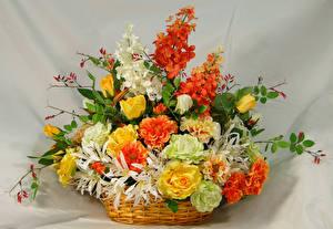 Фотография Букеты Розы Хризантемы Корзинка Цветы