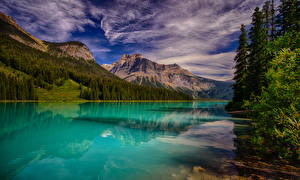Фото Канада Парк Озеро Горы Леса Облако Emerald Lake Yoho National Park