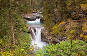 Картинка Канада Парк Водопады Банф Ели Johnston Canyon Природа