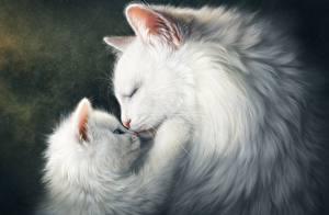 Фотография Коты Рисованные Белая Котенок Животные