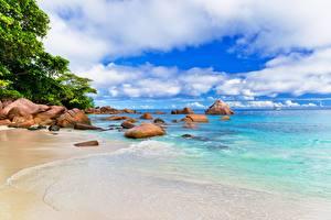 Фото Берег Камни Тропики Море Облака Природа